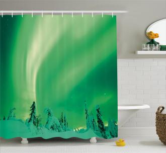 Icy Pine Tree Shower Curtain