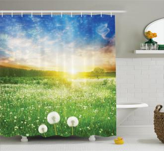 Dandelion Flower Field Shower Curtain