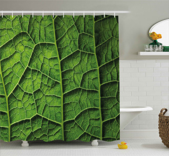 Forest Tree Leaf Texture Shower Curtain