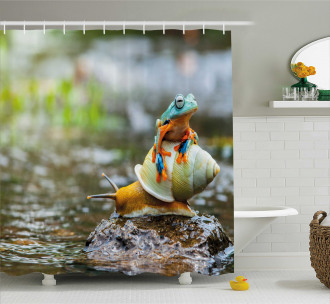 Cute Frog Above the Snail Shower Curtain