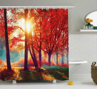 Foggy Autumnal Park Scenic Shower Curtain