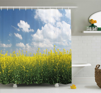 Rapeseed Field Germany Shower Curtain