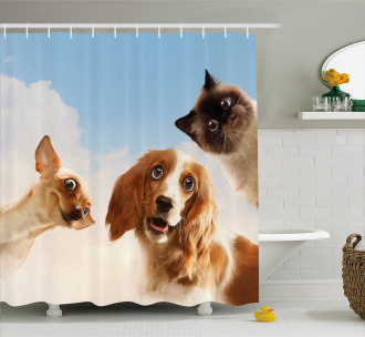 Cats Dogs in Sky Clouds Shower Curtain