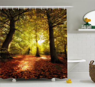 Blurry Forest Dreamy View Shower Curtain