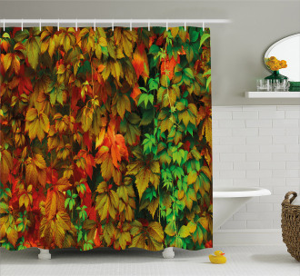 Colorful Leafage Vivid Shower Curtain