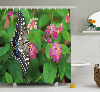 Eco Nature Shower Curtain