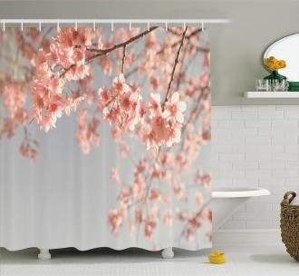 Scenery Sakura Trees Shower Curtain