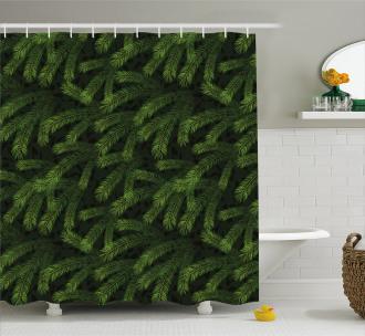 Pine Fir Coniferous Tree Shower Curtain
