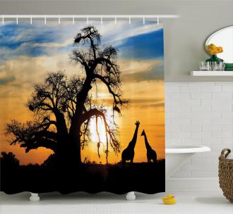 Giraffes Baobab Tree Shower Curtain