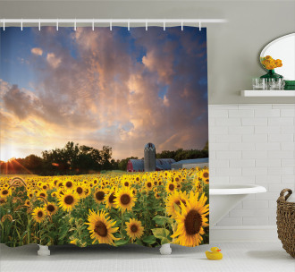 Sunflower Field Sky Shower Curtain