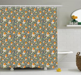 Nursery Style Robin Cartoon Shower Curtain