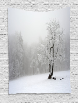 Winter Snowy Forest Cold Tapestry
