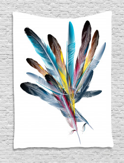 Colorful Feathers Old Pen Tapestry