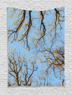 Vibrant Sky with Trees Tapestry