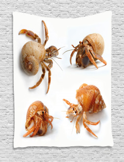 Hermit Crabs Pattern Tapestry