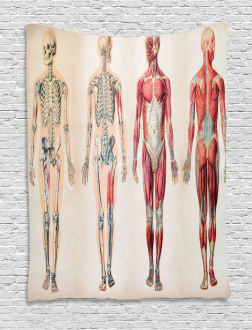 Anatomy Human Body Tapestry