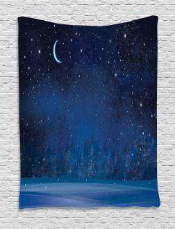 Winter Season Nighttime Tapestry