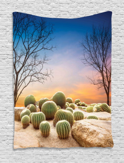 Cactus Balls on Mountain Tapestry
