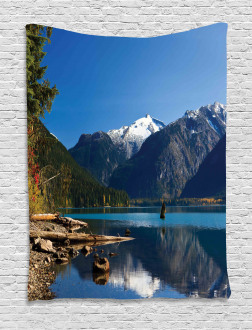 Winter Mountain Trees Tapestry