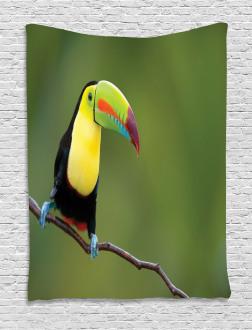Keel Billed Toucan Tapestry