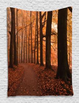 Fall Hiking Enchanted Tapestry