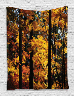 Fall Tranquil Countryside Tapestry