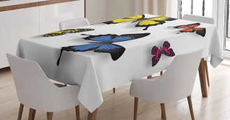 Nature Moths Wings Tablecloth