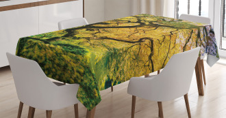 Large Maple with River Tablecloth
