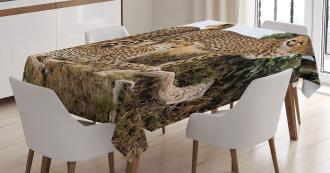 Safari Animal Cheetahs Tablecloth