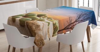 Cactus Balls on Mountain Tablecloth