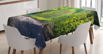 Path in Forest by Lake Tablecloth