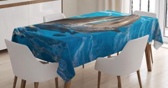 Aqua Show Photography Tablecloth