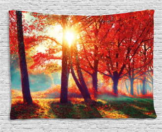 Foggy Autumnal Park Scenic Wide Tapestry