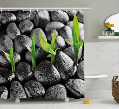 Basalt-Steine ??Bambus Pflanze Schmaler Duschvorhang