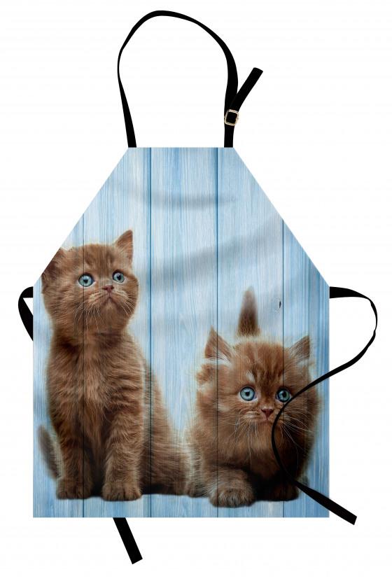 Kahverengi Yavru Kediler Mutfak Önlüğü Mavi Ahşap
