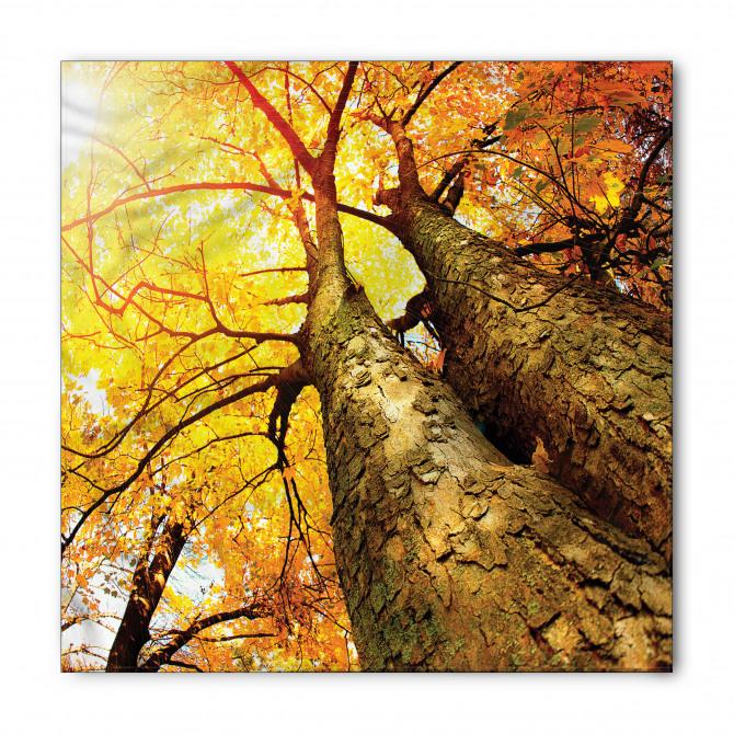 Sarı Yapraklı Ağaç Bandana Fular