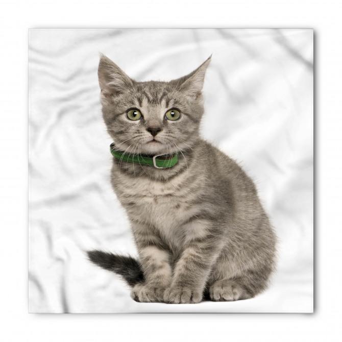 Sevimli Tekir Kedi Bandana Fular