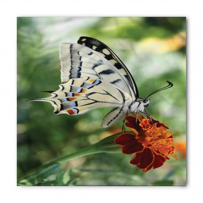Kelebekli ve Çiçekli Bandana Fular