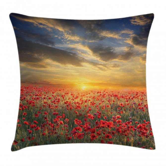 Scenic Field Sunset Sky Pillow Cover