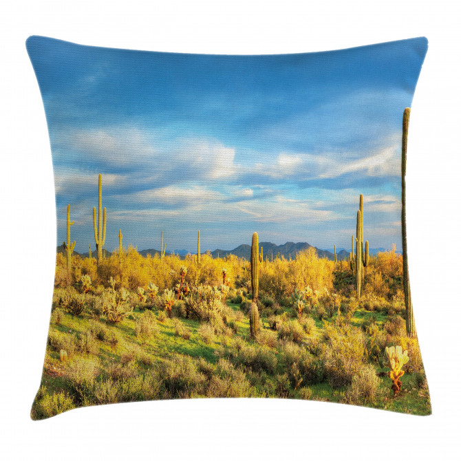 Western Cactus Spikes Pillow Cover