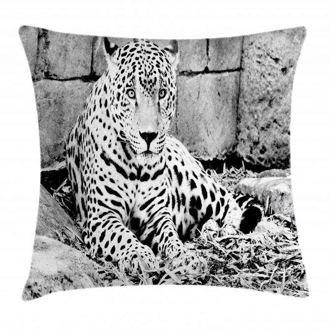 Wild Tiger Jaguar Pillow Cover