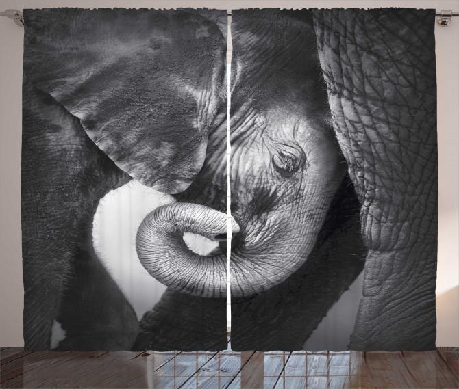 Fil ve Yavrusu Temalı Fon Perde Siyah ve Beyaz