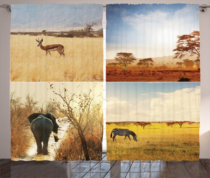 Afrika Yaban Hayatı Fon Perde Doğa