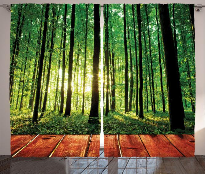 Ormandaki Ahşap Yol Fon Perde Orman Güneş Yeşil