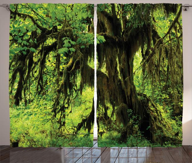 Yağmur Ormanı Temalı Fon Perde Doğa Ağaç