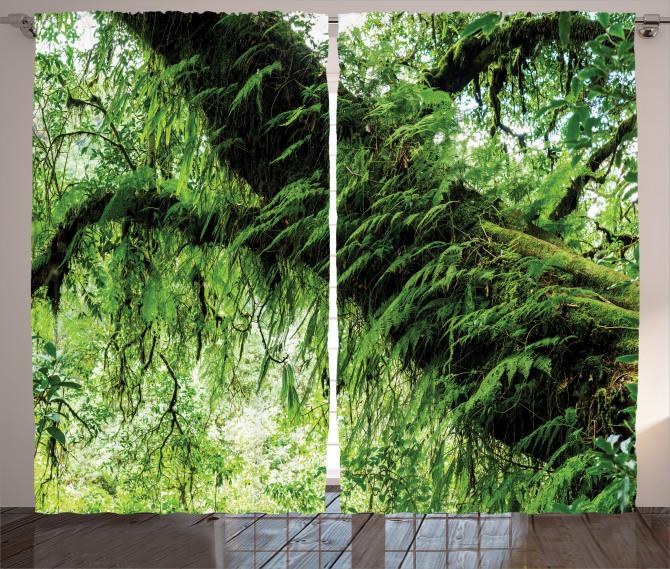 Orman Manzaralı Fon Perde Yeşil Ağaç Doğa