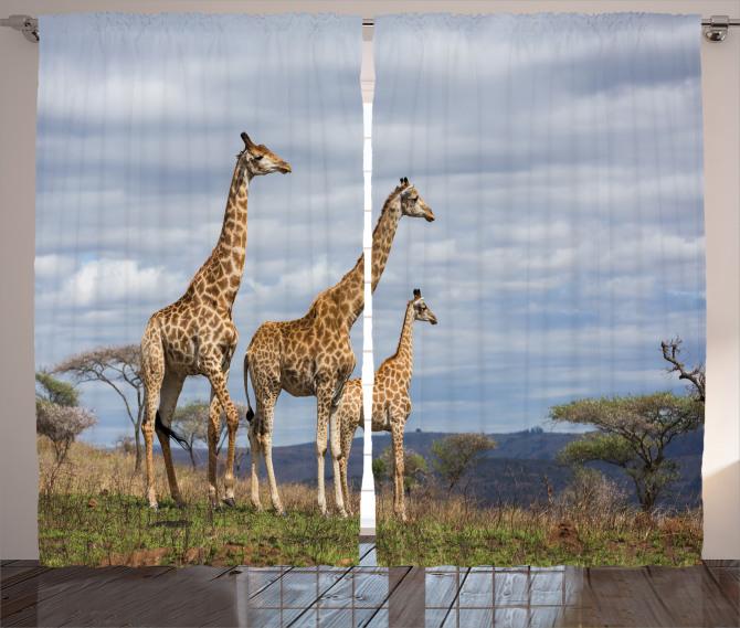 African Giraffe Family Curtain