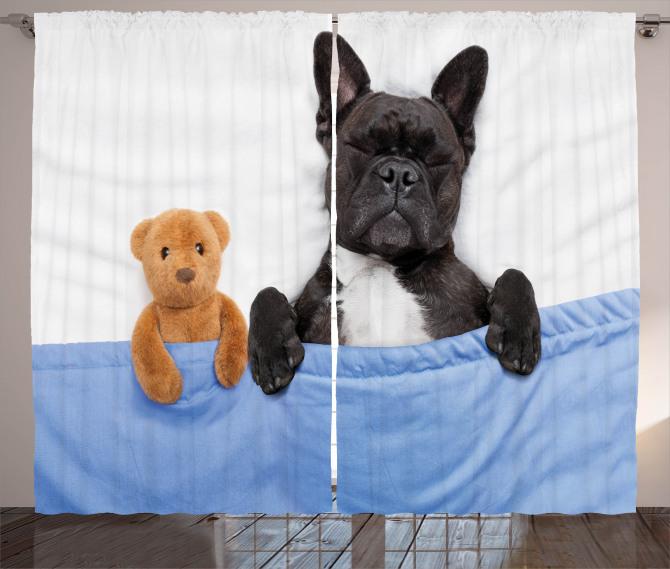 French Bulldog with Bear Curtain