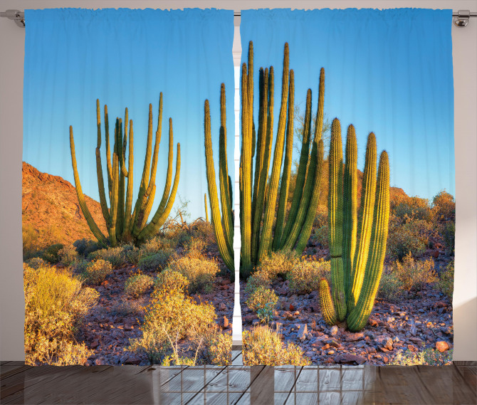 Mountain Cactus Photo Curtain
