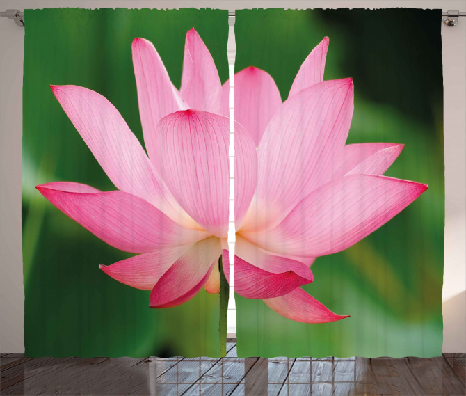 Lotus Lily Blossom Curtain
